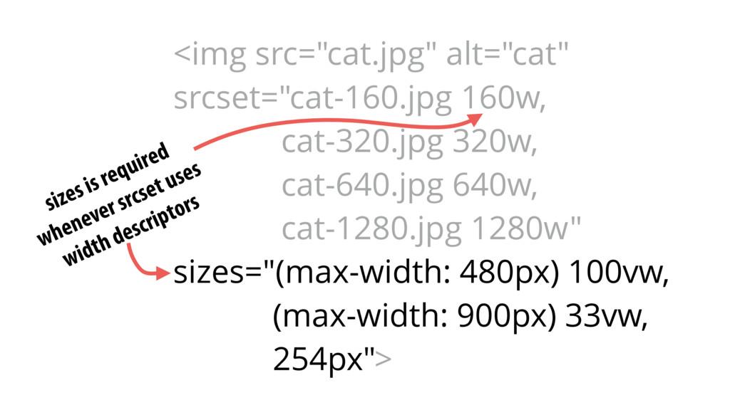 "<img src=""cat.jpg"" alt=""cat"" srcset=""cat-160.jp..."