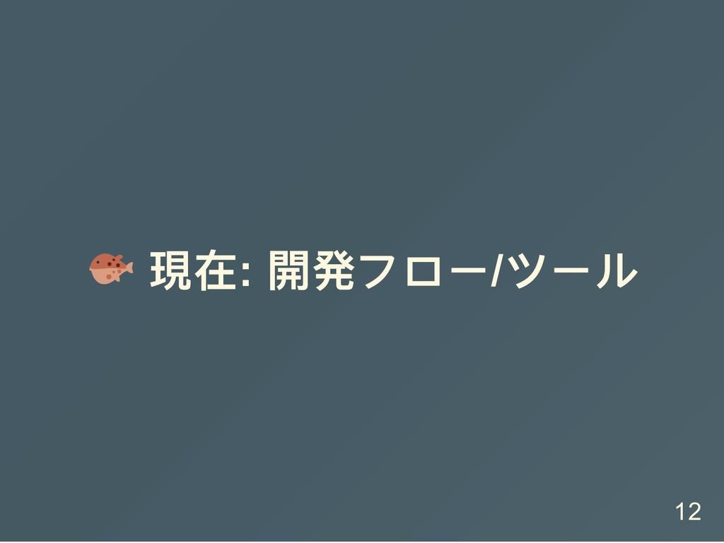 現在: 開発フロー/ ツール 12