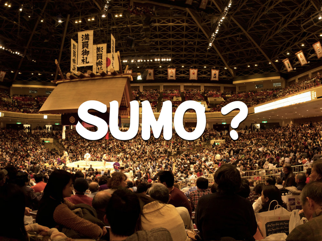 Introduction SUMO ?
