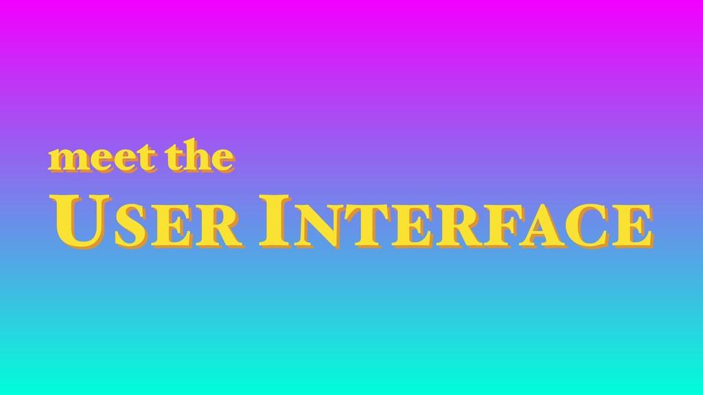 meet the USER INTERFACE