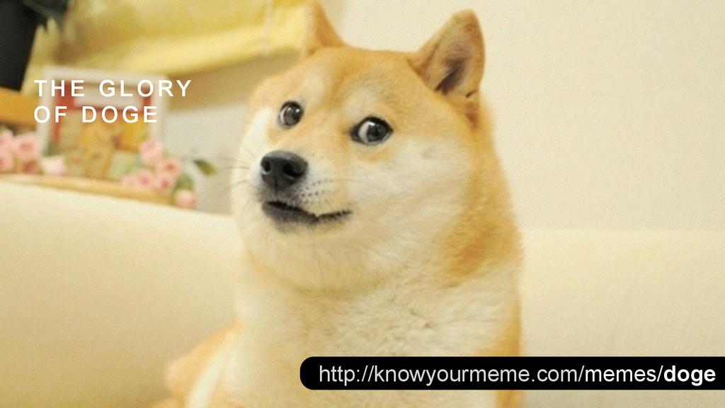 http://knowyourmeme.com/memes/doge T H E G L O ...