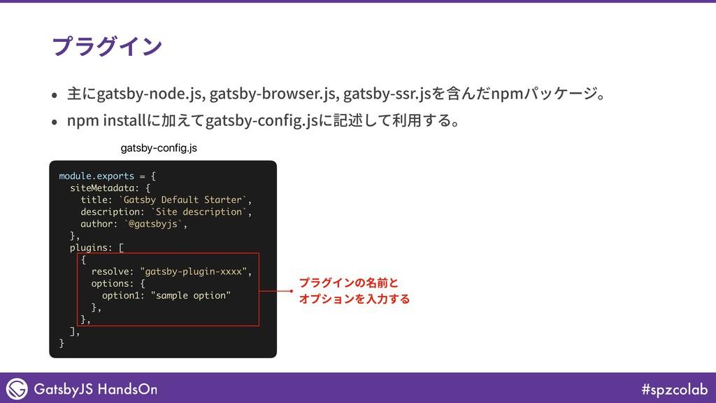 #spzcolab GatsbyJS HandsOn プラグイン • 主にgatsby-nod...
