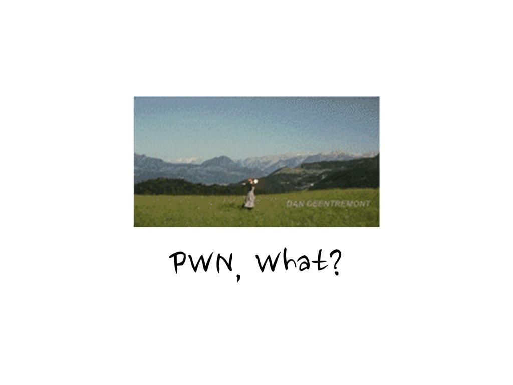 PWN, What?