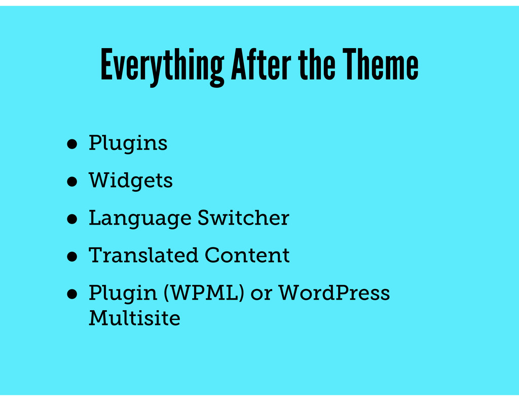 Everything After the Theme • Plugins • Widgets ...