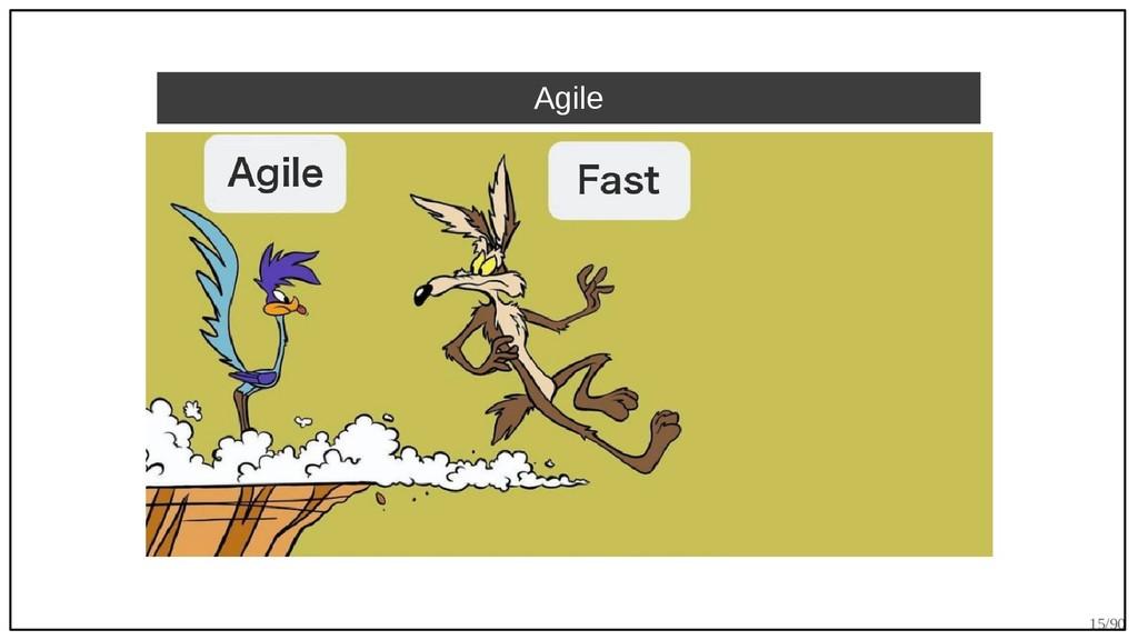 15/90 Agile