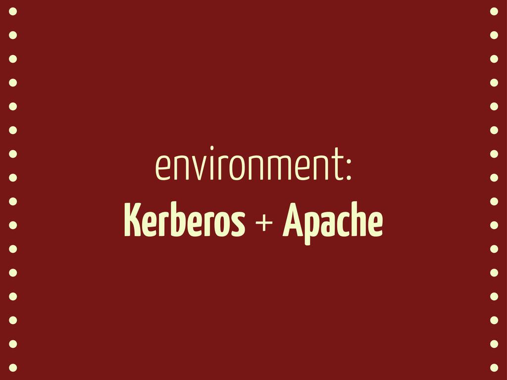 environment: Kerberos + Apache