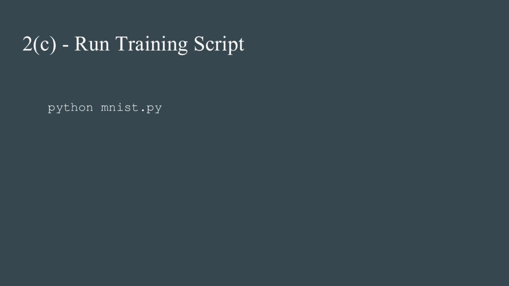 2(c) - Run Training Script python mnist.py