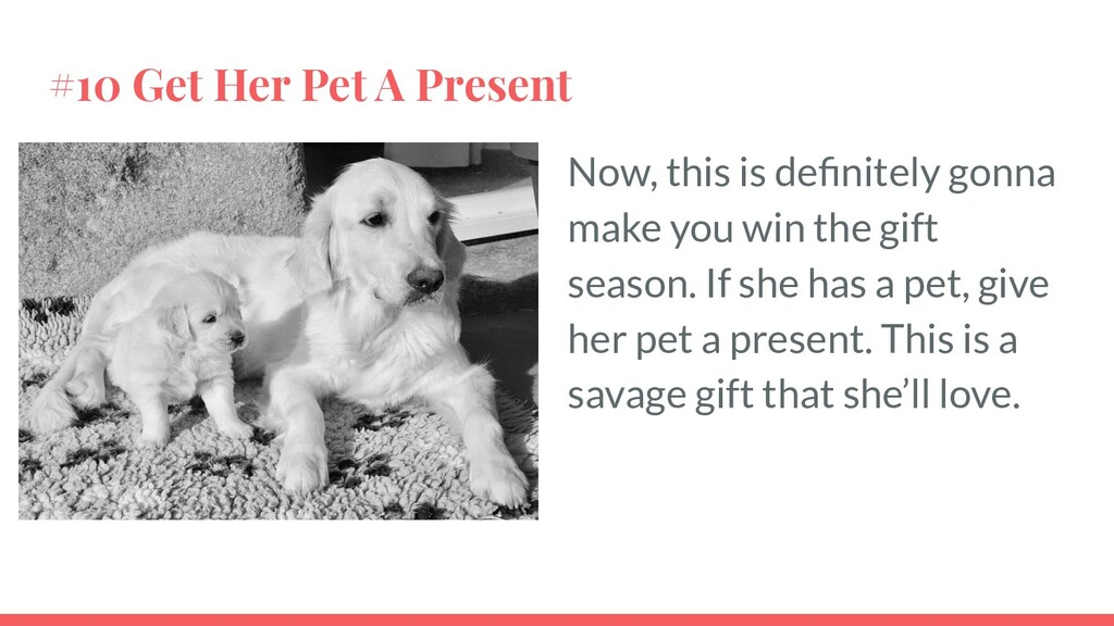 #10 Get Her Pet A Present Now, this is definitel...