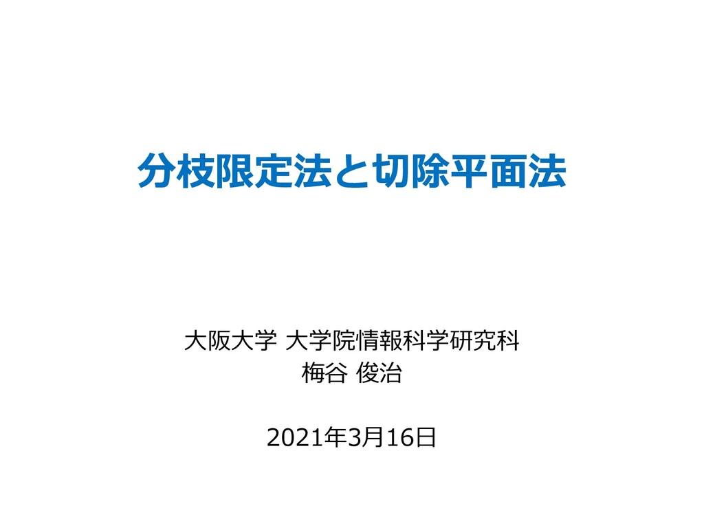 分枝限定法と切除平⾯法 ⼤阪⼤学 ⼤学院情報科学研究科 梅⾕ 俊治 2021年3⽉16⽇