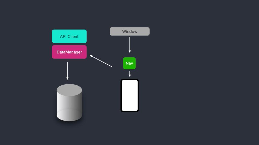 DataManager API Client Nav Window