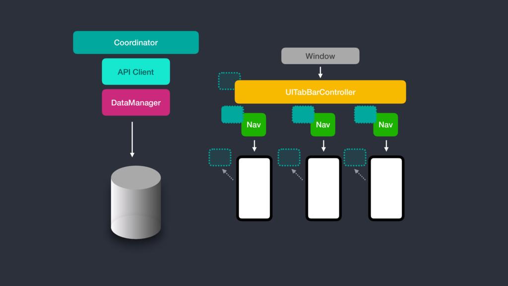 Nav UITabBarController DataManager API Client N...