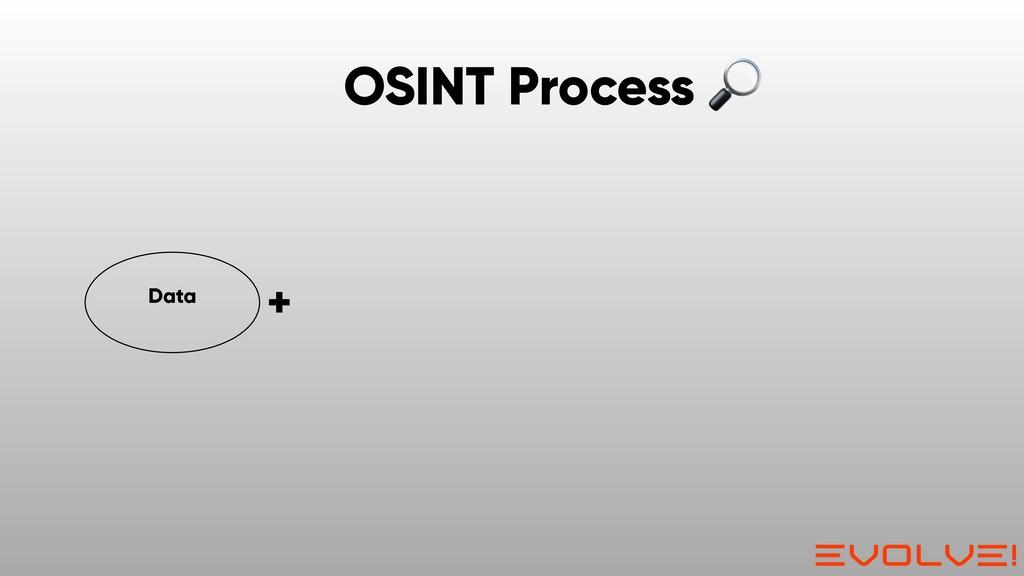 Data + OSINT Process