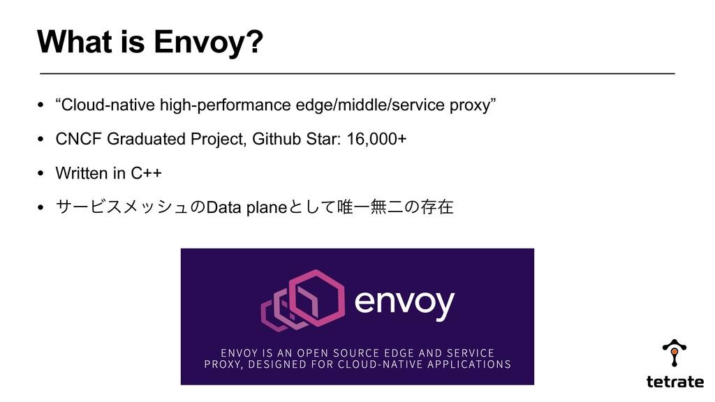 "• ""Cloud-native high-performance edge/middle/se..."