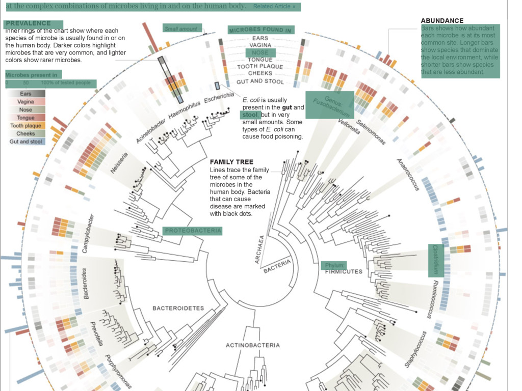 at the complex combinations of microbes living ...