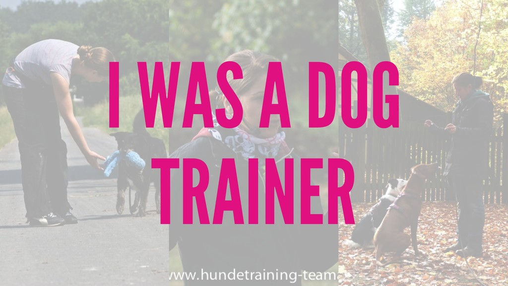 I WAS A DOG TRAINER