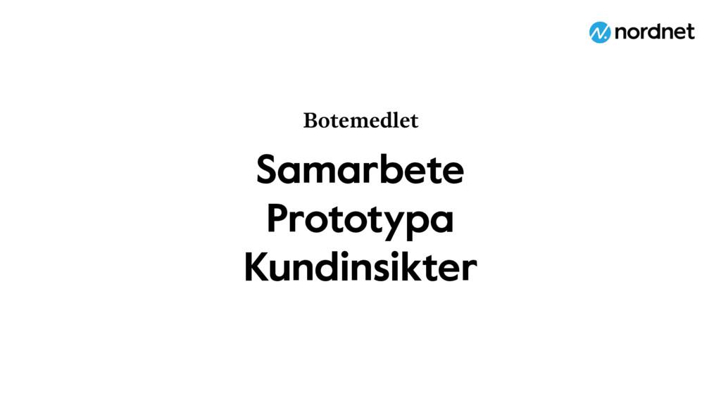 Samarbete Prototypa Kundinsikter Botemedlet