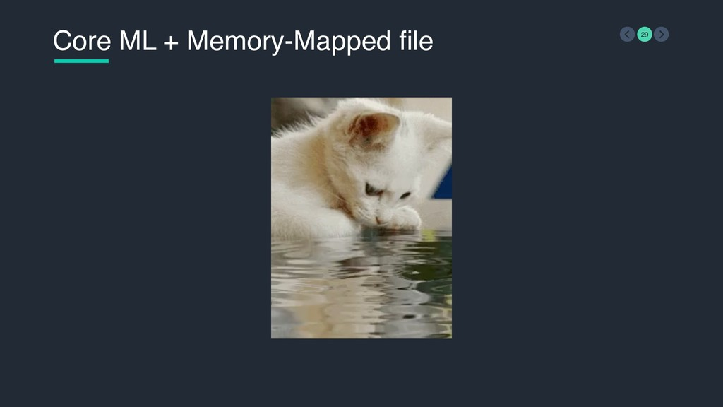 Core ML + Memory-Mapped file 29