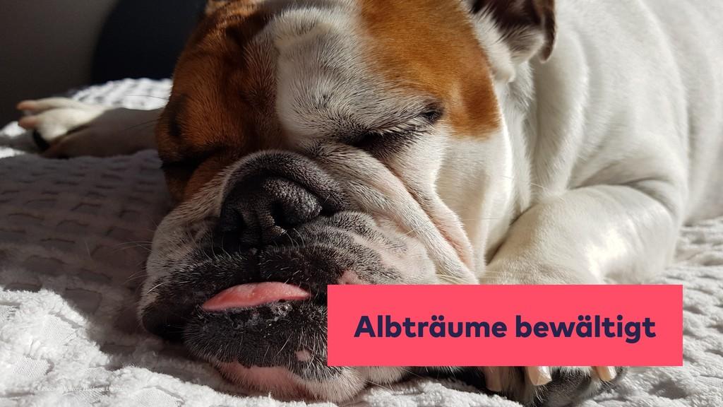 Albträume bewältigt Photo by Rebecca Hobbs on U...