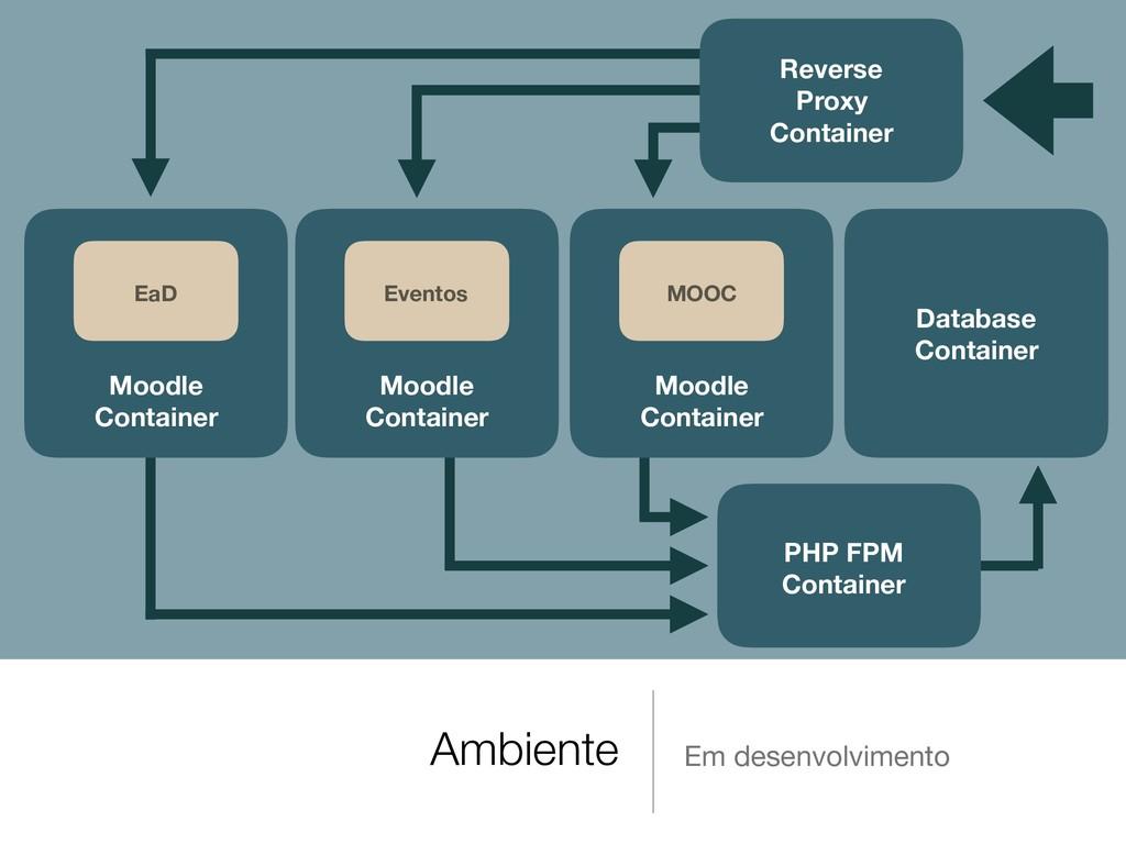 Ambiente Em desenvolvimento Database Container ...