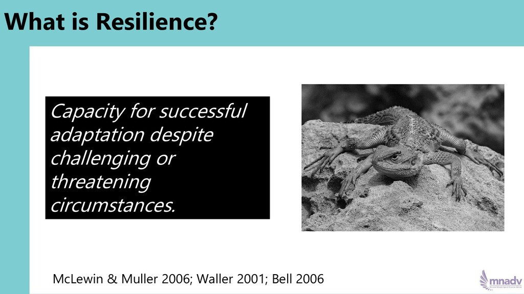 What is Resilience? McLewin & Muller 2006; Wall...