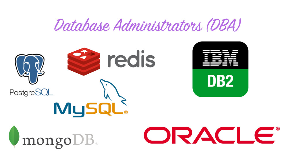 Database Administrators (DBA)