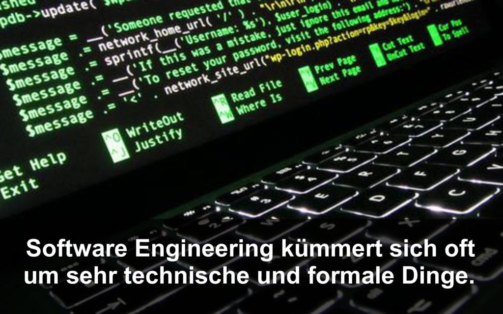 Software Engineering kümmert sich oft um sehr t...