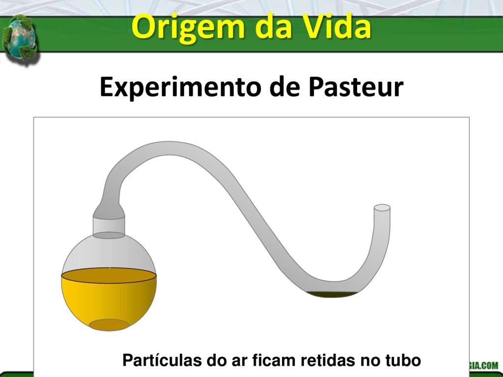 Experimento de Pasteur Partículas do ar ficam r...