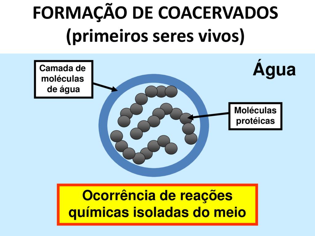 FORMAÇÃO DE COACERVADOS (primeiros seres vivos)...