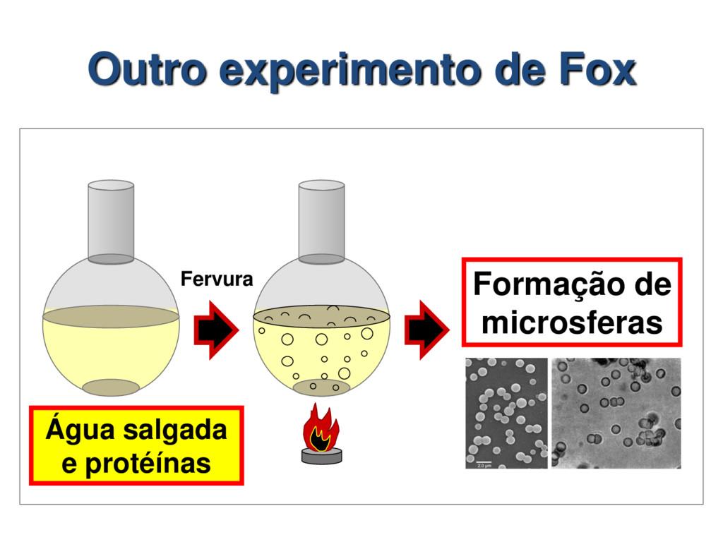 Fervura Outro experimento de Fox Água salgada e...