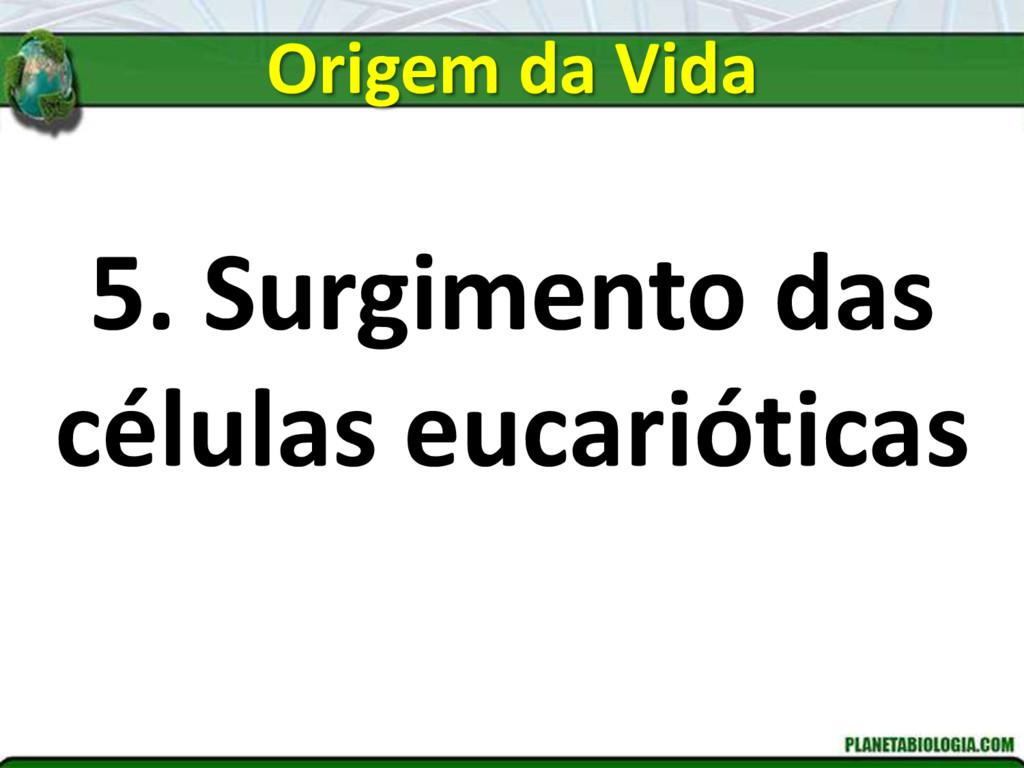 5. Surgimento das células eucarióticas Origem d...