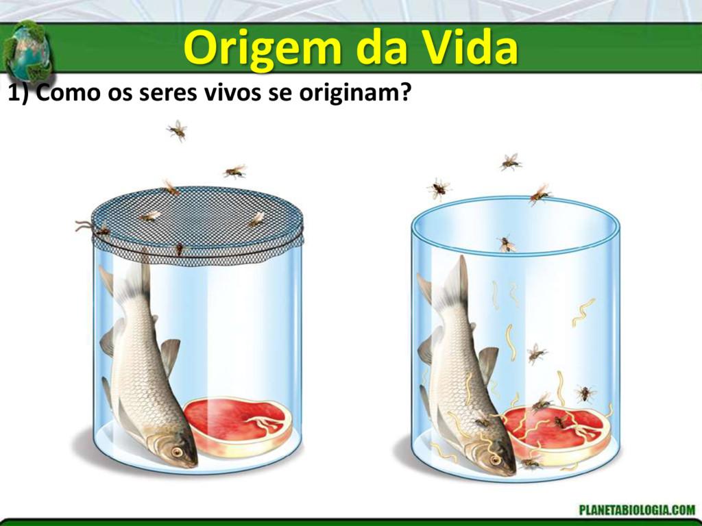 Origem da Vida 1) Como os seres vivos se origin...