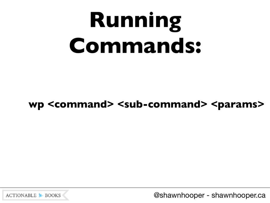 wp <command> <sub-command> <params> Running Com...