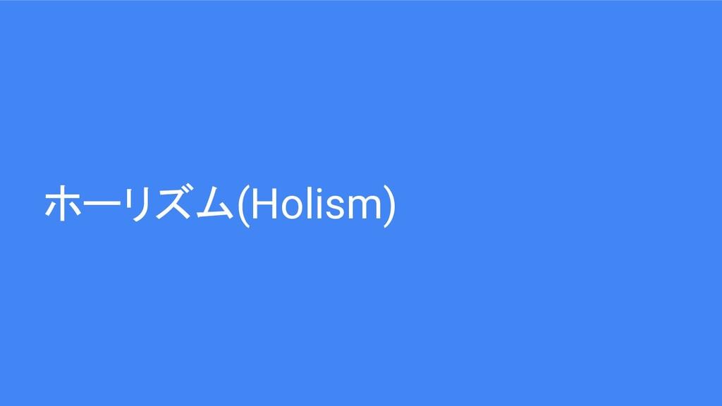 ホーリズム(Holism)