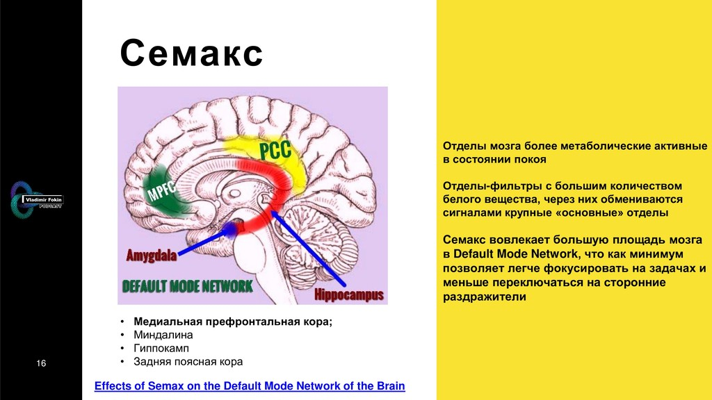 16 Семакс Effects of Semax on the Default Mode ...