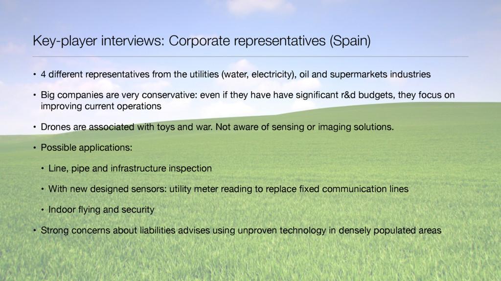 Key-player interviews: Corporate representative...
