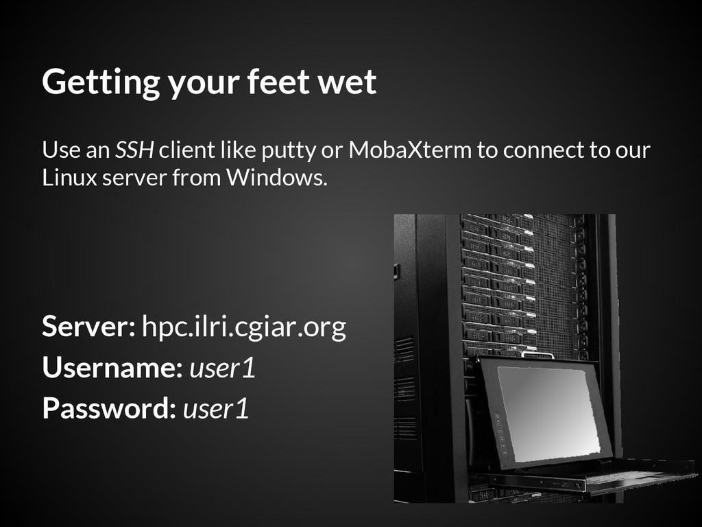 Getting your feet wet Server: hpc.ilri.cgiar.or...