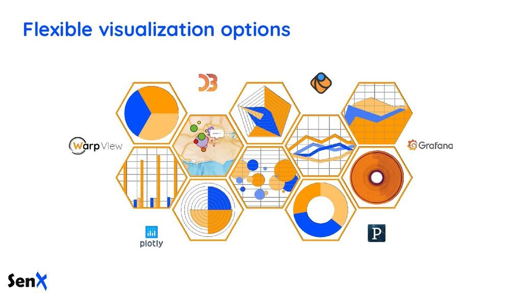 Flexible visualization options