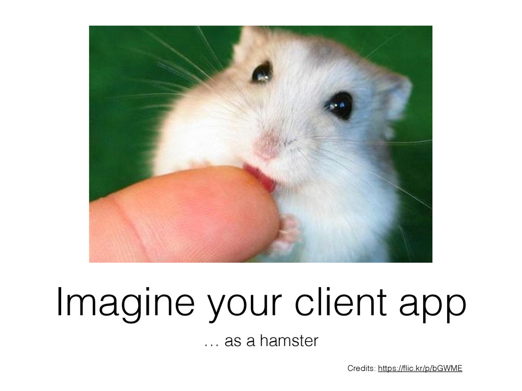Imagine your client app … as a hamster Credits:...
