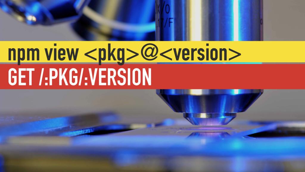 GET /:PKG/:VERSION npm view <pkg>@<version>