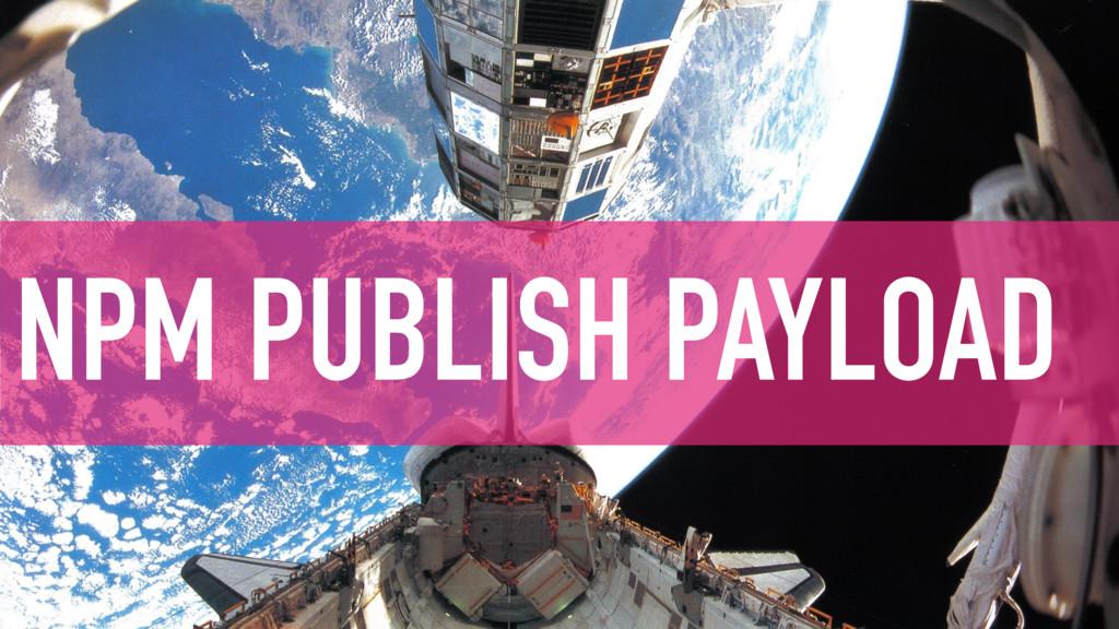 NPM PUBLISH PAYLOAD