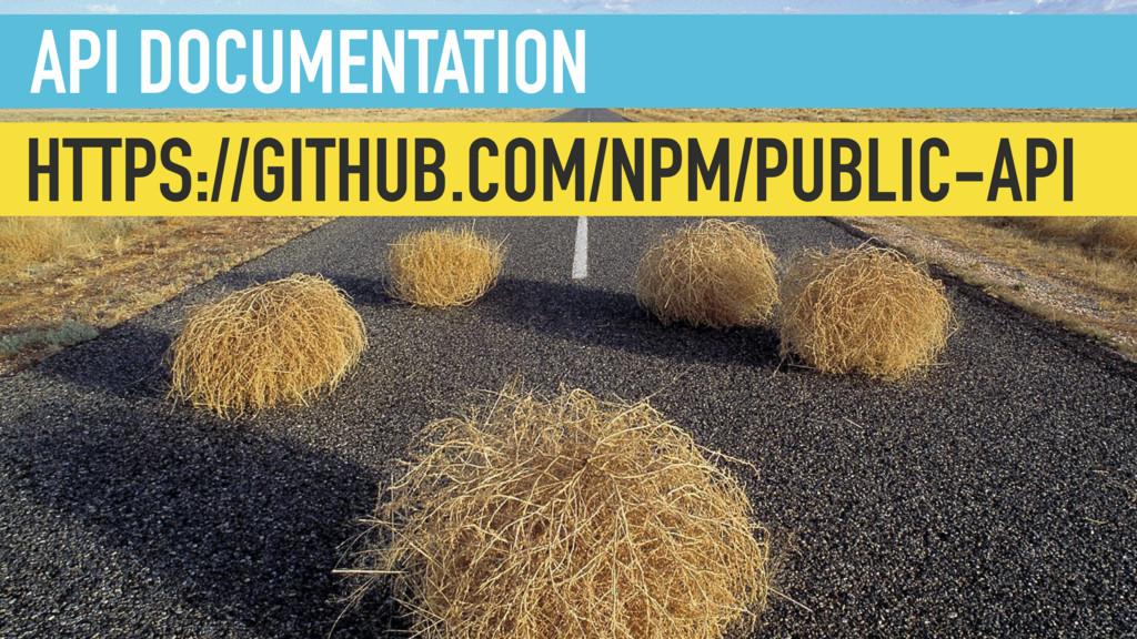 API DOCUMENTATION HTTPS://GITHUB.COM/NPM/PUBLIC...