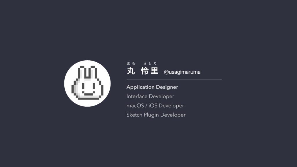 @usagimaruma ؙ  ྯ ཬ · Δ ͞ ͱ Γ Application Desi...