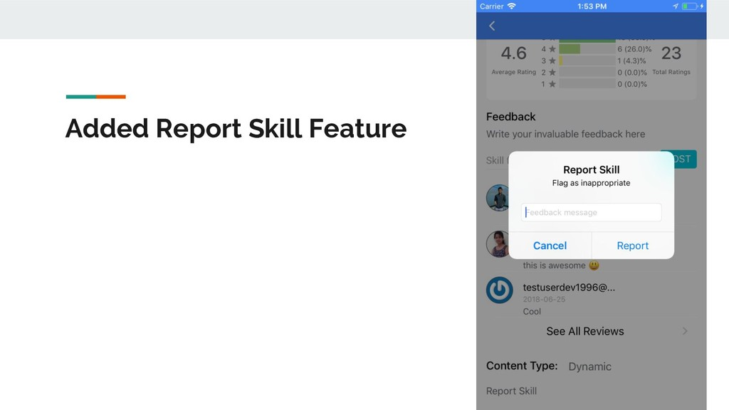 Added Report Skill Feature