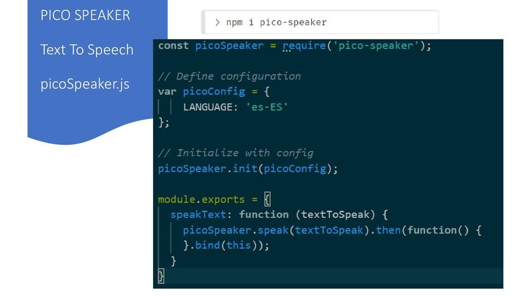 PICO SPEAKER Text To Speech picoSpeaker.js