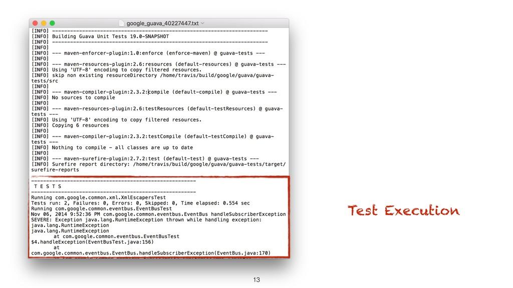 13 Test Execution
