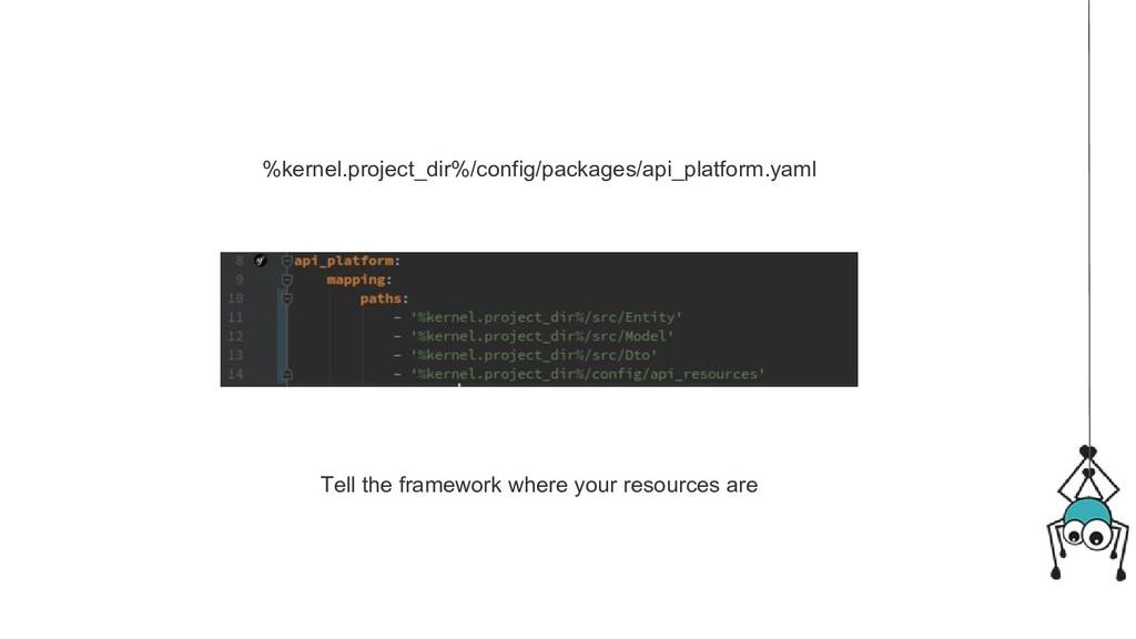 %kernel.project_dir%/config/packages/api_platfo...