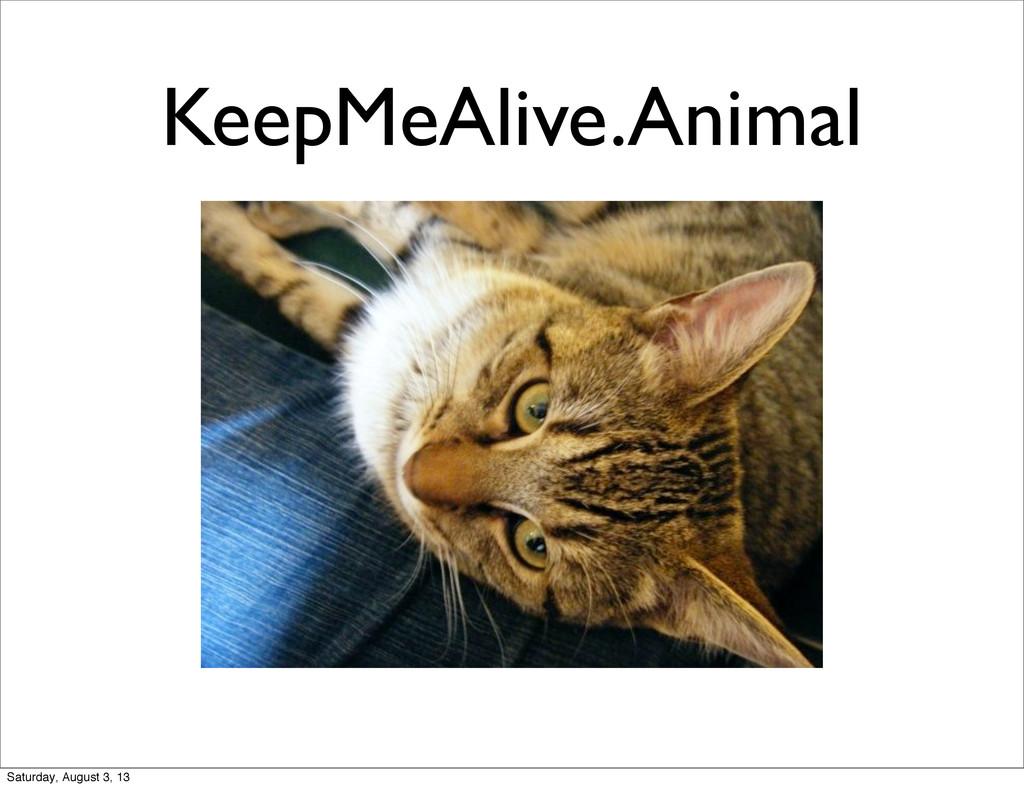 KeepMeAlive.Animal Saturday, August 3, 13