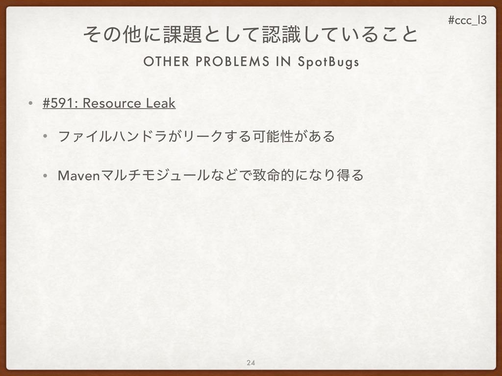 #ccc_l3 OTHER PROBLEMS IN SpotBugs ͦͷଞʹ՝ͱͯࣝ͠͠...