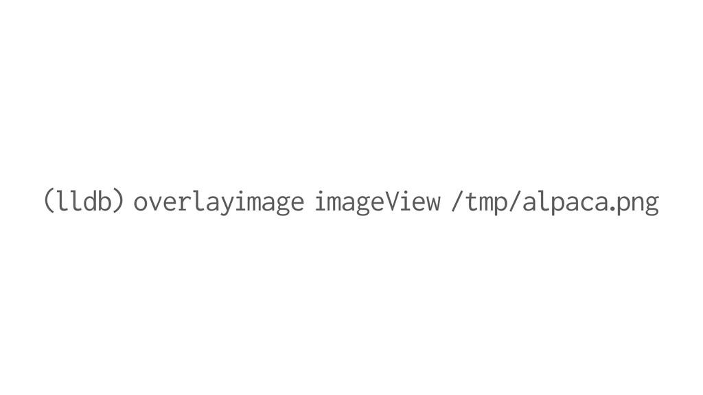 (lldb) overlayimage imageView /tmp/alpaca.png