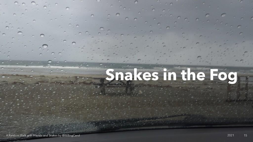 Snakes in the Fog A Random Walk with Friends an...